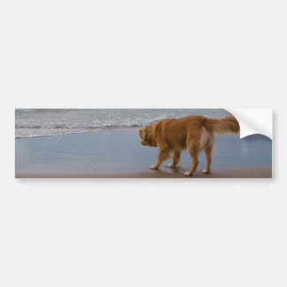 Nova Scotia Duck Tolling Retriever Ocean Cautious Bumper Sticker