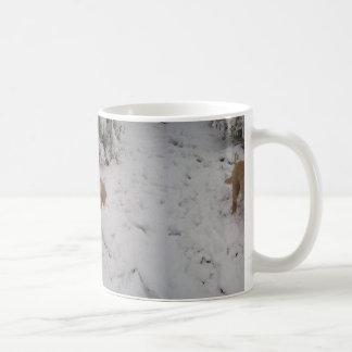 Nova_Scotia_Duck-Tolling_Retriever pup in snow Coffee Mug