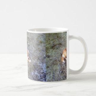NovaScotiaDuck-TollingRetriever laying 2 Coffee Mug
