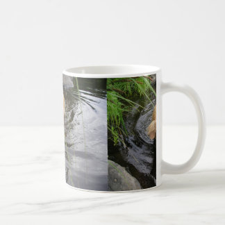 Novascotian_duck-tolling_retriever_in_Lake Coffee Mug