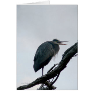 November Great Blue Card