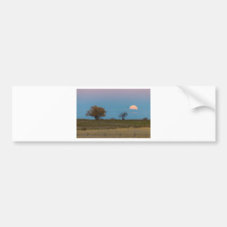 November Supermoon Rising Bumper Sticker