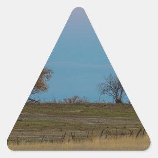 November Supermoon Rising Triangle Sticker