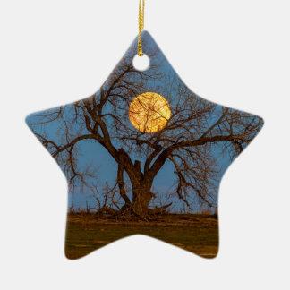 November Supermoon Tree Ceramic Star Ornament