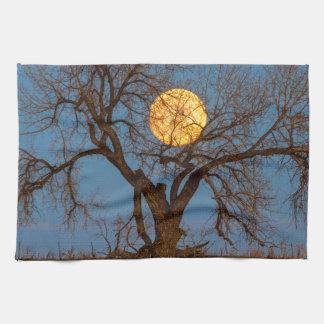 November Supermoon Tree Kitchen Towel