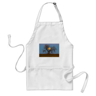 November Supermoon Tree Standard Apron