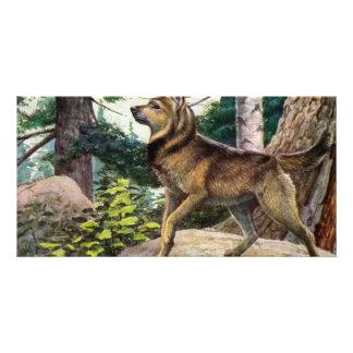 Nowegian elkhound photo greeting card