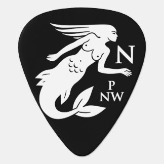 npnw pirates flag guitar pick