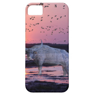 NT Buffalo iPhone 5 Cover