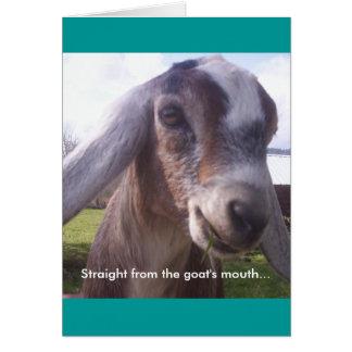 Nubian Goat Card