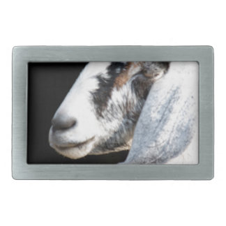 nubian goat rectangular belt buckle