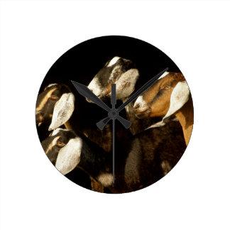 Nubians Does Focused Clock