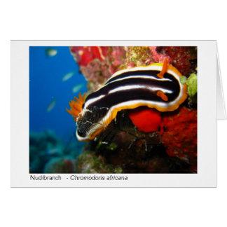 Nudibranch gift card - 02