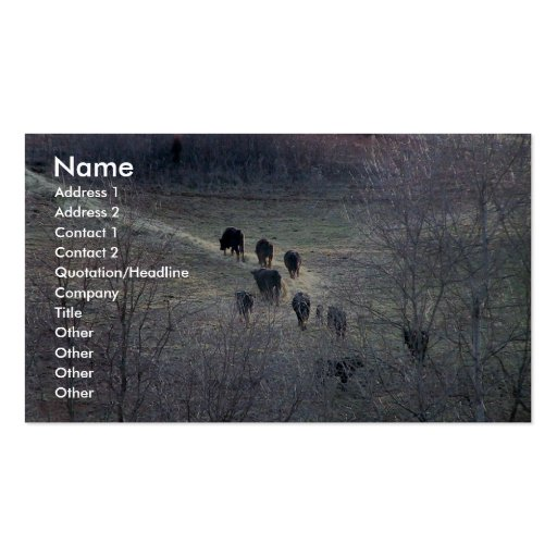 Number Of Cow Going For Feed In Winter Business Card