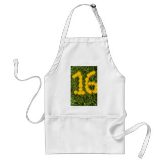 number sixteen drawn with dandelion on the lawn standard apron