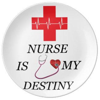 Nurse Destiny Plate