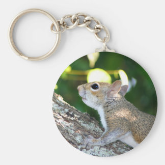Nut Hunter keychain