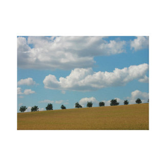 Nut tree avenue at the corn field with white cloud stretched canvas print