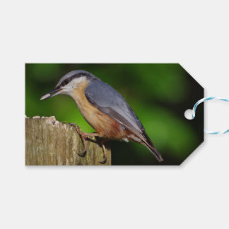 Nuthatch Gift Tags
