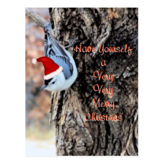 Nuthatch Merry Christmas Postcard-customize Postcard