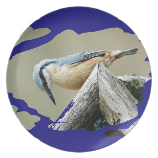 NUTHATCH - Photography Jean Louis Glineur Party Plate