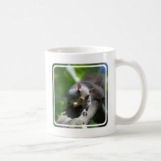 Nutty Squirrel Coffee Mug