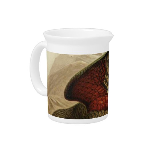 NZ Birds - Kea Semi-Abstract Beverage Pitchers