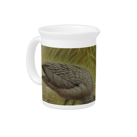 NZ Birds - NZ Herons Semi-Abstract Drink Pitchers