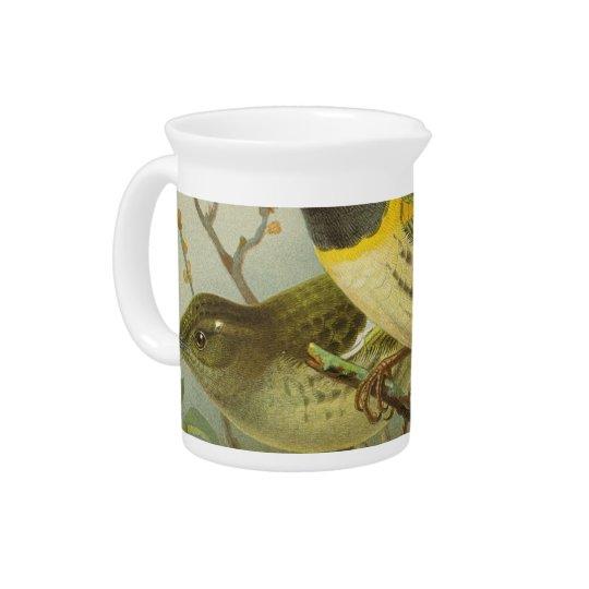 NZ Birds - Stitch Birds Semi-Abstract Beverage Pitchers