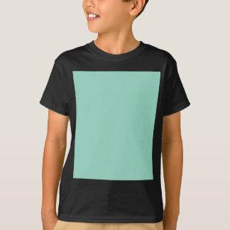 O01 Ocean Green Color T-Shirt