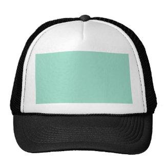O01 Ocean Green Color Trucker Hat