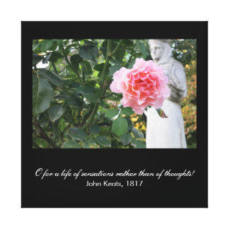 O for a life of sensations (Keats quote) Canvas Print
