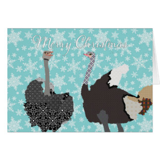 O' Holy Ostrich  Christmas Greeting Greeting Card