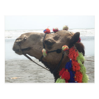 O man! Muscat Postcard