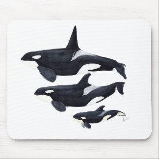 O.orca-fond transparent mouse pad
