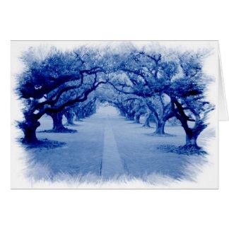 Oak Alley Card