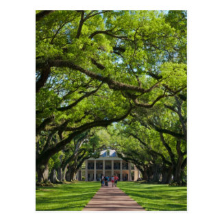 Oak Alley Plantation House Postcard