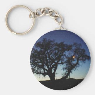 Oak at Dusk Basic Round Button Keychain