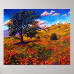 Oak in the Poppy Fields Poster