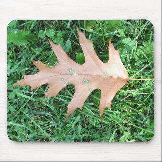 Oak Leaf Mouse Pad