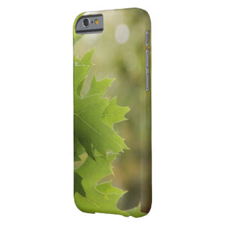 Oak leaves barely there iPhone 6 case