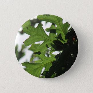 Oak Leaves Button