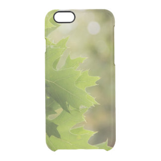 Oak leaves clear iPhone 6/6S case