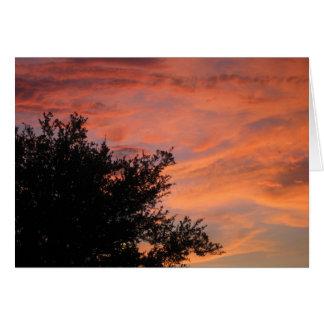 Oak Leaves on Pink Sky Greeting Card