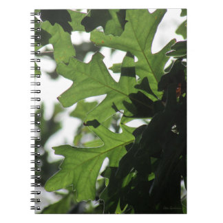 Oak Leaves Spiral Notebook