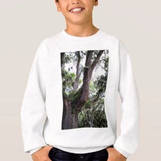 oak & mossGeorgia Live Oaks And Spanish Moss Sweatshirt