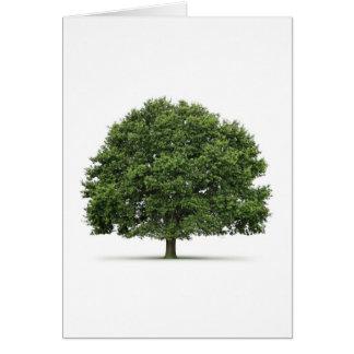 Oak Tree Card