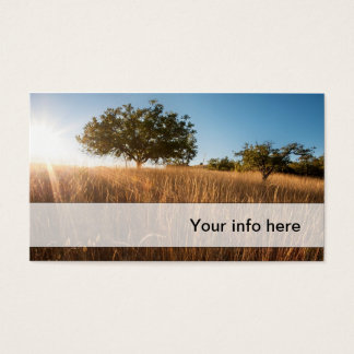 Oak tree in sunny golden meadow business card
