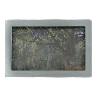 Oak tree in the forest belt buckles