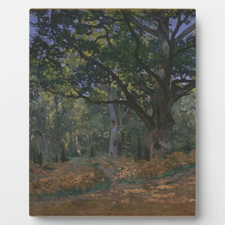 Oak tree in the forest plaque
